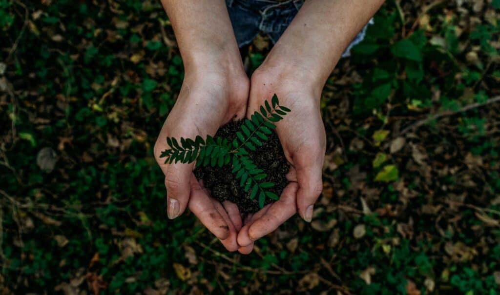 10 Eco-Friendly Habits to Live a More Sustainable Life